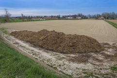 Manure used as fertilizer on meadow fields. Fertilizer from cow manure and straw. Heap of manure, have been taken out on the field in early spring to fertilize Royalty Free Stock Image