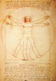 Manuscript. Rome, Italy - 29 March, 2012: Replica of the famous Vitruvian Man by Leonardo da Vinci on display at Leonardo Museum, Rome stock photos