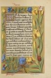 Manuscript booknuscript book. Ancient historical illustration royalty free stock image