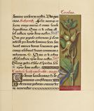 Manuscript booknuscript book. Ancient historical illustration stock photography
