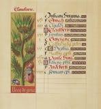 Manuscript booknuscript book. Ancient historical illustration stock photo