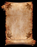 Manuscript with flowers 4. Manuscript, roll of parchment with flowers background frame Royalty Free Stock Photos