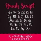 Manuscrit de brosse avec les lettres minuscules et majuscules Image libre de droits