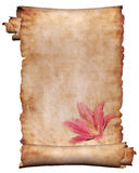 Manuscrito com flores 3 foto de stock royalty free