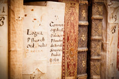 Manuscrits dans le latin photos libres de droits