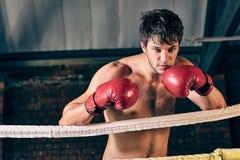 Manutbildningsidrottshall som boxas Muttahida- Majlis-E-Amalcirkelskugga som boxas blandad kampsport Fotografering för Bildbyråer