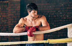 Manutbildningsidrottshall som boxas Muttahida- Majlis-E-Amalcirkelskugga som boxas blandad kampsport Arkivfoto