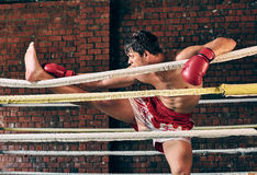 Manutbildningsidrottshall som boxas Muttahida- Majlis-E-Amalcirkelskugga som boxas blandad kampsport Royaltyfria Foton
