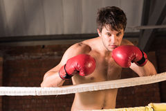 Manutbildningsidrottshall som boxas Muttahida- Majlis-E-Amalcirkelskugga som boxas blandad kampsport Arkivfoton