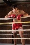Manutbildningsidrottshall som boxas Muttahida- Majlis-E-Amalcirkelskugga som boxas blandad kampsport Royaltyfria Bilder
