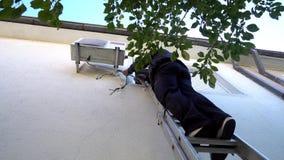 Manutenção de Doing Air Conditioner do coordenador de Technican Fotos de Stock Royalty Free