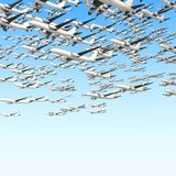 Many airplanes on blue sky Stock Photography
