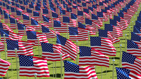 Many American flags on display for Memorial Day or July 4th. Royalty Free Stock Photography