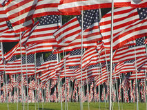 Many American Flags in the Grass. Kennesaw State Park Georgia, USA - over 3000 flags were put up to remember all who died on 9/11 in New York Stock Images