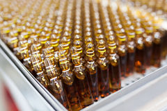 Many ampoules Stock Photography