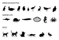Many animals Royalty Free Stock Images