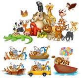 Many Animals On White Background Stock Images