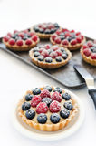Many appetising fruit tarts. Yummy looking mix berry tarts, with shallow depth of field stock photo