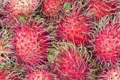 Many appetizing rambutans Royalty Free Stock Photos