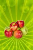 Many apples Stock Photos
