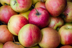 Many apples in closeup in market. Meals for vegetarians by nature Stock Photo