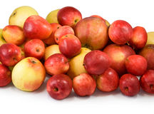 Many apples on a white background closeup Royalty Free Stock Photography