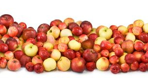 Many apples on a white batskground closeup Royalty Free Stock Photo