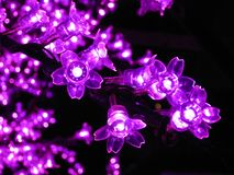 Free Many Artificial Flowers. Christmas Decoration. Stock Photography - 111400312