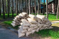 Many bags on the green grass in the summer forest stock photo