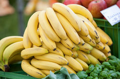 Many bananas on fruit market Royalty Free Stock Photos