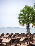 Many beach chairs on the seashore Royalty Free Stock Image