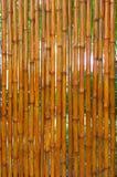 Many beautiful bamboo fence Royalty Free Stock Photos