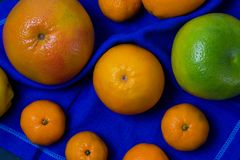 Many beautiful bright juicy ripe delicious mouth-watering citrus fruits are are dark blue on a black background scattered freely c stock images
