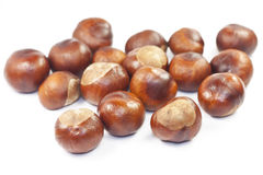 Many beautiful shiny brown chestnuts Royalty Free Stock Photography