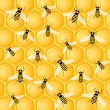 Many bees on honeycomb stock illustration