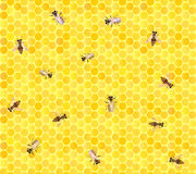 Many bees on honeycomb, seamless background. Stock Photos