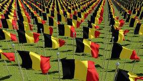 Many Belgium Flags on green grass. Stock Photo