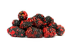 Many berries isolated on the white background Royalty Free Stock Photography