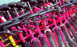 Many bicycles. A hire service for bicycles Royalty Free Stock Image
