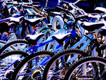 Many Bicycles Parked. At a College Bicycle Parking Area Royalty Free Stock Photos