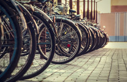 Many bicycles stand one-behind-one Royalty Free Stock Photo