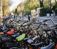 Many bicycles on street of Amsterdam city, parking ideal traffic eco healthy lifestyle concept close up at sunlight Stock Photography