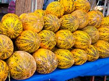 Melons in the market Stock Images
