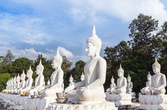 Many big white buddha statue sitting in thai temple Royalty Free Stock Photo
