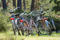 Many bikes parked in the forest Stock Images