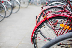 Many bikes standing in bike stands Royalty Free Stock Image