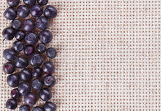 Many bilberry fruits, on gray linen Stock Image