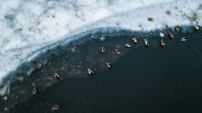Many birds on the ice of the river. Aerial survey stock photography