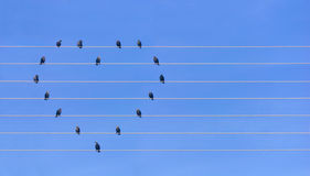Many birds sitting at wires in form of heart Stock Photography