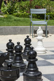 Many black chessmen and white bishop on the street chessboard with chair. And green grass as background Stock Photo